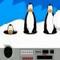 Plucky's Snowb…
